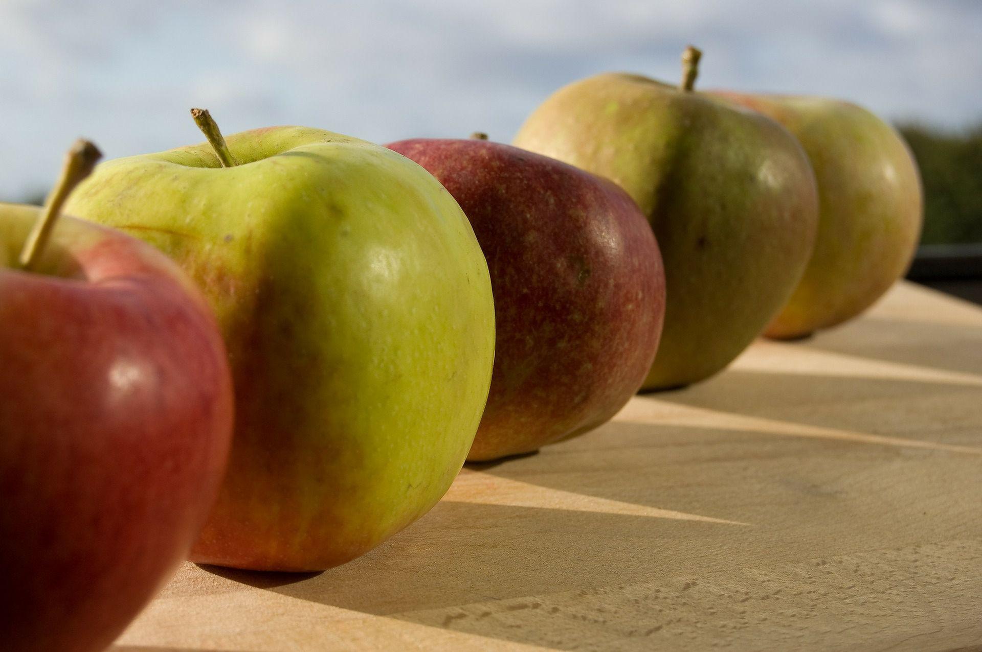 Dieta Jablkowa Wp Abczdrowie