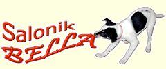 Kurs groomerski (strzyżenie, trymowanie i pielęgnacja psów)