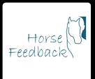 Szkolenie z końmi z zarządzania zmianą w firmie