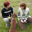 Kurs posłuszeństwa psa w świecie – miejski pies towarzysz