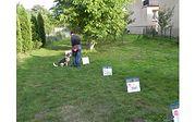 Szkolenie - Rally Obedience