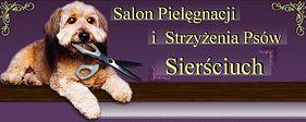 Kurs pielęgnacji zwierząt (groomingu)