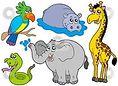 Ciekawostki z życia zwierząt