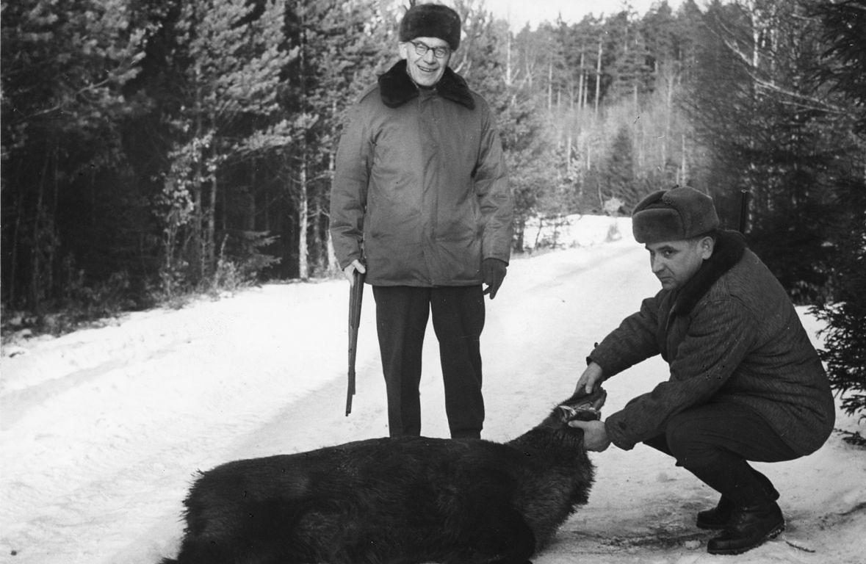 Władysław Gomułka z ustrzelonym przez siebie dzikiem. Nie było to specjalnie trudne - gdy przyjeżdżali znamienici goście, zwierzęta zwabiano w jedno miejsce
