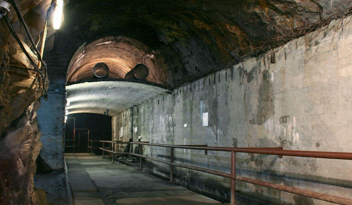 Jeden z tuneli wchodzących w skład kompleksu Riese