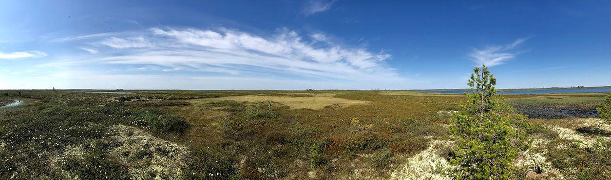 Pod powierzchnią olbrzymich obszarów Syberii kryje się cała tablica Mendelejewa. Rosyjskie władze ostrzą sobie zęby na bogactwa Arktyki - kosztem środowiska i klimatu