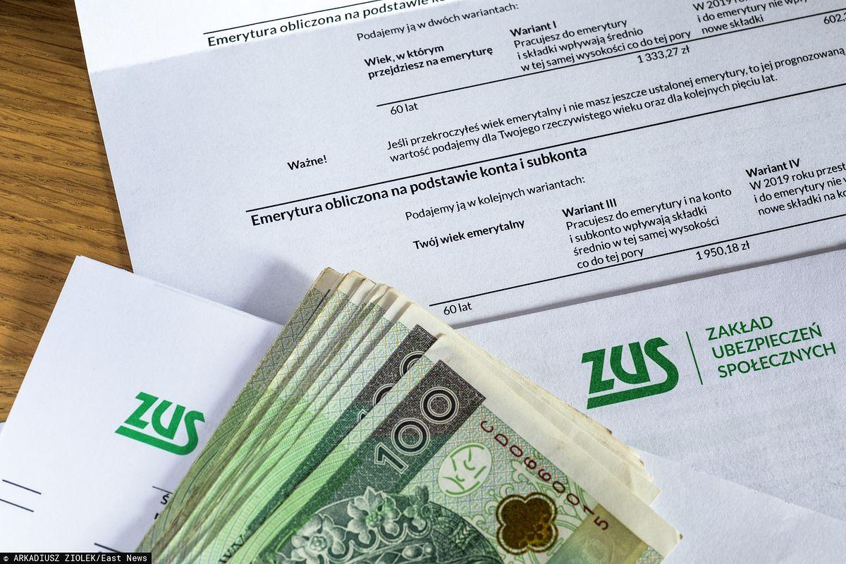 Mały ZUS 2020. Czasu zostało niewiele - Money.pl