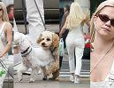 Margaret zapomniała się ubrać na spacer z psami. Ładną ma bieliznę? (ZDJĘCIA)