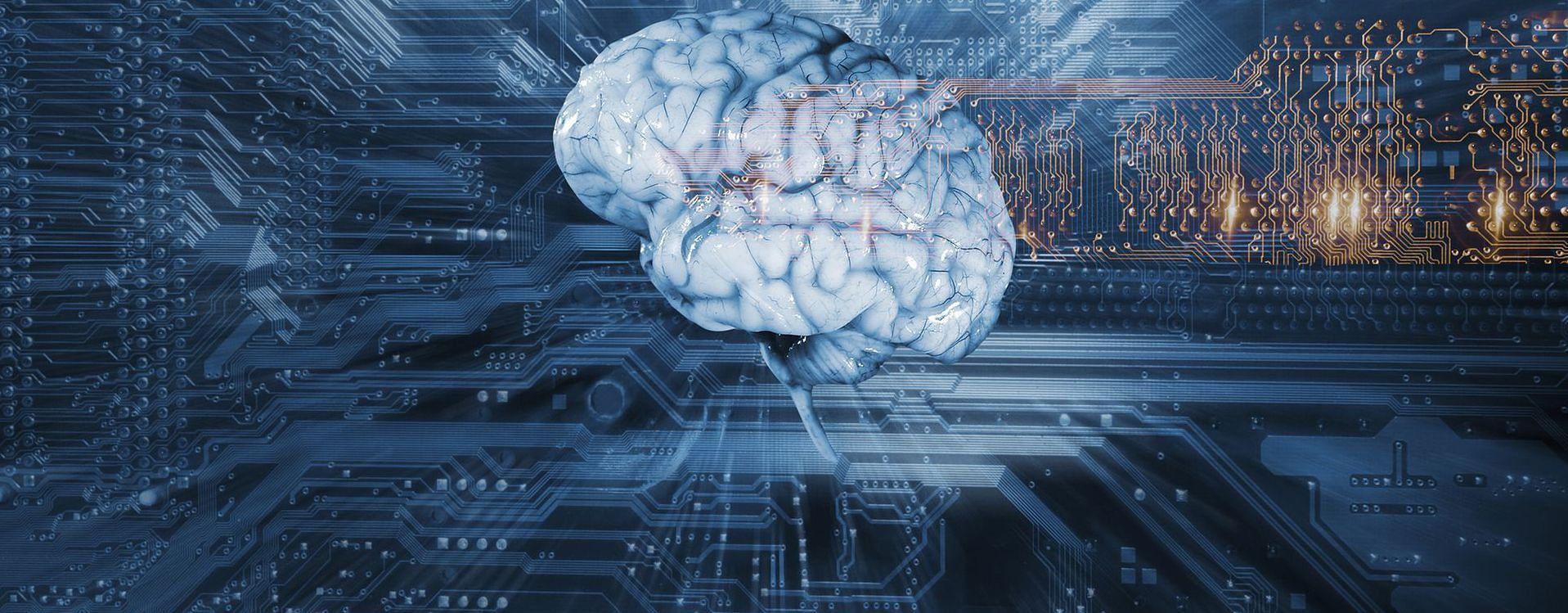 Zdjęcie mózgu pochodzi z serwisu Depositphotos