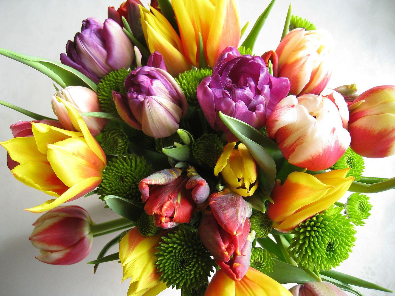 8 marca. Życzenia na Dzień Kobiet 2020. Kwiaty i prezenty to nie ...