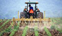 Rolnicze podróbki do ochrony roślin. Wykryto rekordową ilość nielegalnych środków