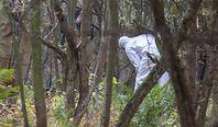 Lubelskie. Białorusinka zgwałciła Polaka w lesie. Nowe ustalenia