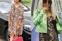 Z czym nosić sukienkę w zwierzęce wzory?