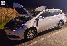 Kierowca ma obowiązek udzielić pomocy rannemu zwierzęciu - choćby poprzez wezwanie służb