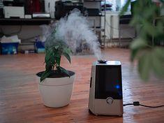 Nawilżacze powietrza - czy warto kupić? Podpowiadamy