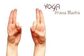 Prana-Mudra(Mudra życia)