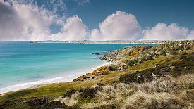 Falklandy to jedno z zamorskich terytoriów Wielkiej Brytanii.