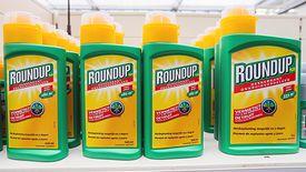 Roundup przyczynił się do rozwoju raka u 70-letniego Amerykanina - zdecydował sąd w San Francisco.