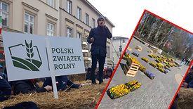"""Rolnicy z Agrounii rozłożyli napis """"#żywność"""" pod Pałacem Kultury i Nauki."""