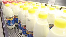 Mleko krowie i roślinne będzie objęte taką samą stawką. Dzięki interwencji Senatu