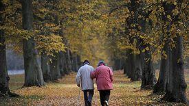 Środki z OFE mają trafić albo na indywidualne konta emerytalne, albo do ZUS, w zależności, co wybierzemy.