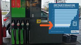 O tym, czy za paliwo zapłacimy więcej niż Rumuni czy Czesi, decydują głównie politycy