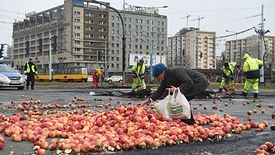Protest rolników czy marnowanie żywności?