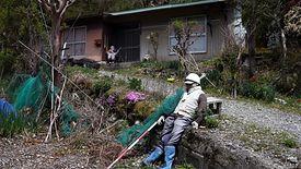 W japońskiej wsi Nagoro kukły przed opuszczonymi domami zastąpiły ludzi