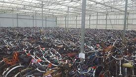 W magazynie pod Rotterdamem czekają tysiące używanych rowerów. Do tej pory trafiały one głównie do Azji