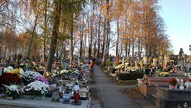 Łódź zmniejsza budżet na utrzymanie nekropolii.