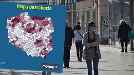 Rekordową stopę bezrobocia zanotowano w powiecie szydłowieckim w województwie mazowieckim, gdzie wyniosła aż 24,5 proc.
