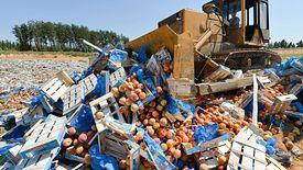 Kiedy Rosja niszczyła objętą embargiem żywność świat się oburzał. W rzeczistości każdego dnia robi to samo