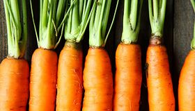 Żywność ekologiczna, czyli jaka?