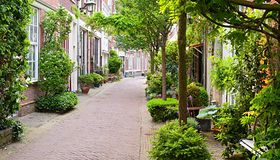 Miasta-ogrody jutra