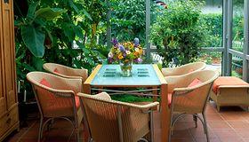 Jak stworzyć ogród zimowy na balkonie? O tym musisz pamiętać