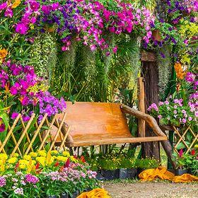 Jak urządzić ogród ekologiczny?