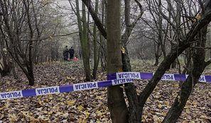 Tarnobrzeg. Szukali w lesie martwych dzików. Dokonali przerażającego odkrycia