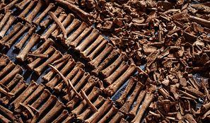 Rwanda. 30 tys. ofiar ludobójstwa w zbiorniku wodnym