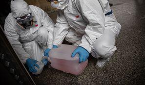 Koronawirus w Polsce. Kolejne przypadki zakażenia. Ministerstwo Zdrowia publikuje nowe dane