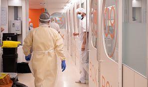 Koronawirus w zakładach drobiarskich. Produkcja wstrzymana, 233 pracowników zarażonych