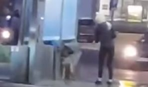 Szczecin. Czyściła psa na myjni samochodowej. Zwierzę wyło z bólu