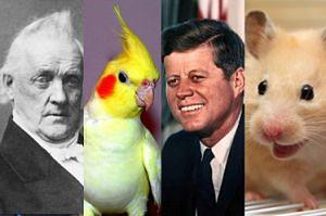 Zwierzaki, które wyglądają jak prezydenci USA (ZDJĘCIA)
