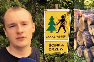 """Mieszkańcy Białowieży popierają wycinkę w Puszczy! """"Dużo drzewa leży i się marnuje. Część człowiek spaliłby w piecu"""""""