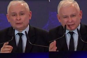 """Jarosław Kaczyński wskazuje obrońców pedofilów: """"To PO i jej sojusznicy"""""""