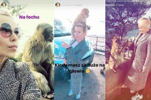 """Doda poleciała na Gibraltar karmić małpy. """"Kiedy masz dużo na głowie""""... (FOTO)"""