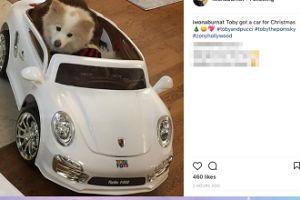 """Iwona """"Żona Hollywood"""" kupiła Tobiemu... samochód"""
