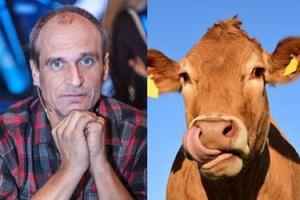 """Paweł Kukiz chce adoptować krowę, która uciekła z transportu do rzeźni: """"Hart ducha tej krowy jest NIE DO PRZECENIENIA!"""""""