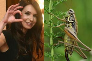 """Marta Kaczyńska zachęca do jedzenia owadów: """"Można znaleźć coś nie tylko zdrowego, LECZ I SMAKOWITEGO"""""""