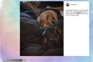 Małgorzata Rozenek-Majdan opublikowała zdjęcie z łóżka
