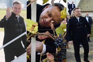 Ludowy Andrzej Duda zbiera winogrona na węgierskim szczycie V4 (ZDJĘCIA)